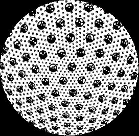 Absolute_marker_pattern_OptoFidelity_blog_by_Murat_Deveci