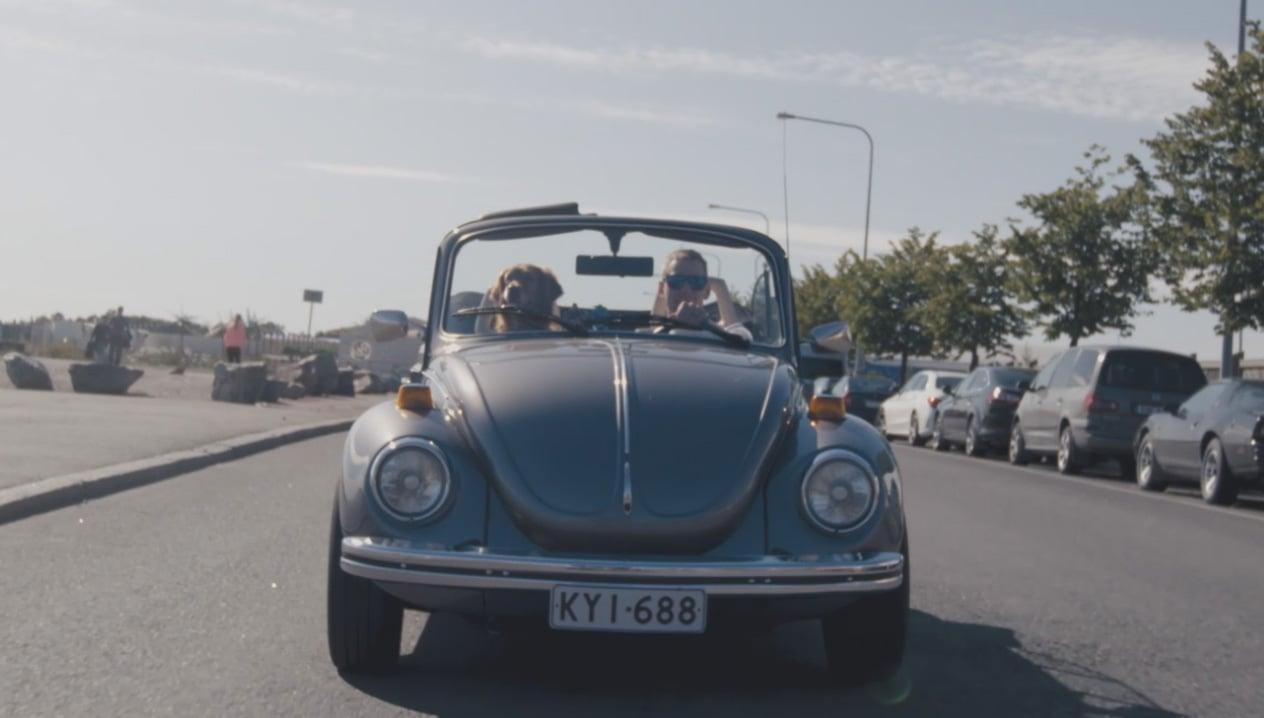 Man+dog+car